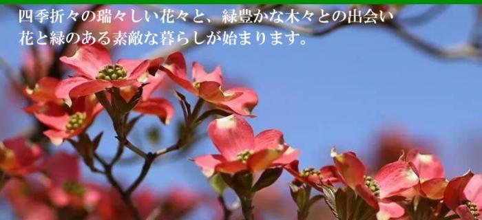 shop_04