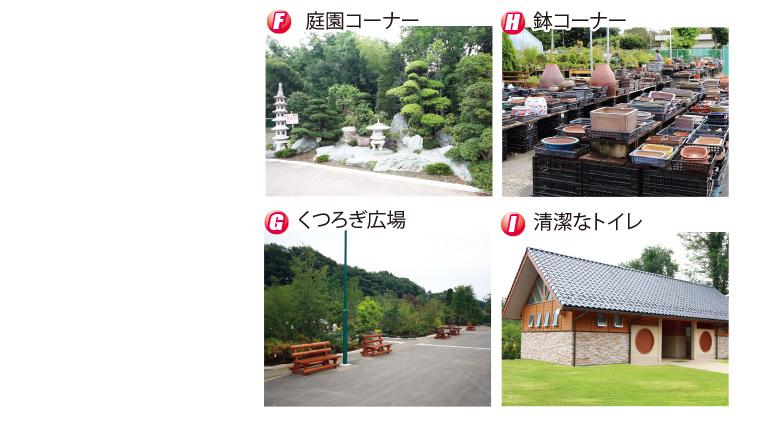 guide-p02